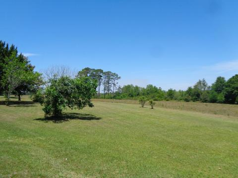 Local Real Estate: Homes for Sale — Florala, AL — Coldwell Banker