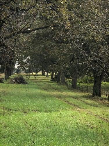 SFR located at 4634 County Road 54 E