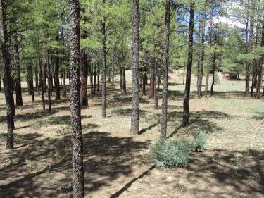 LND located at 3635 Apache Drive