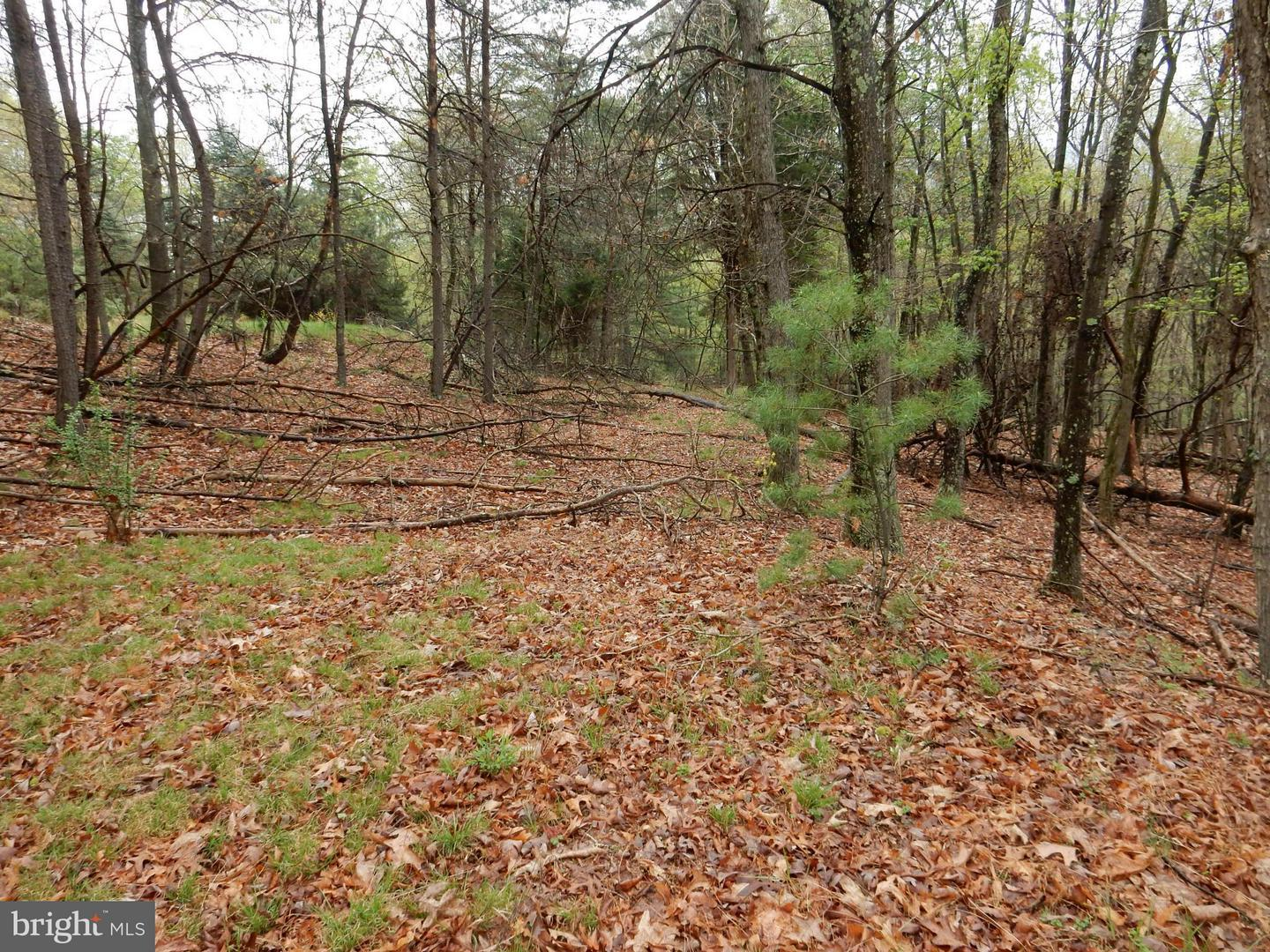 Homes for Sale in Capon Springs WV — Capon Springs Real Estate ...