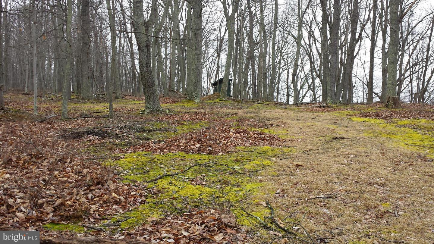 Old Fields Real Estate — Homes for Sale in Old Fields WV — ZipRealty