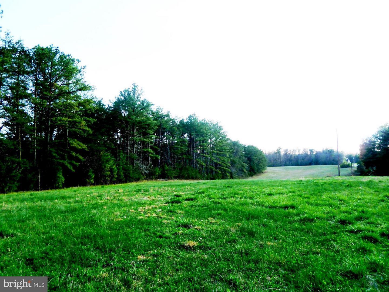 Sarah Rollins - Century 21 Battlefield Real Estate - Home ...