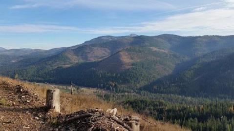 Local Real Estate: Homes for Sale — Cataldo, ID — Coldwell