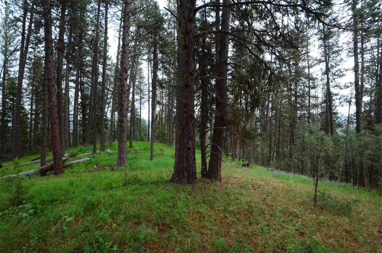 Tbd Middle Fork Ridge Garden Valley Id Mls 98660499 Better Homes And Gardens Real Estate