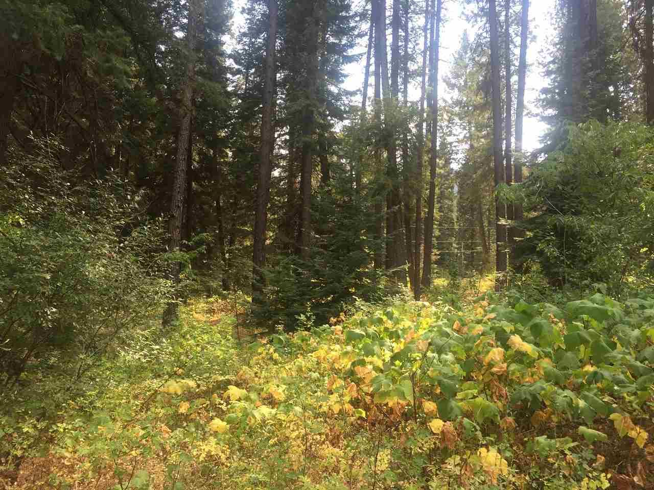 Lot 19 Elk Run, Garden Valley, ID — MLS# 98669033 — ERA