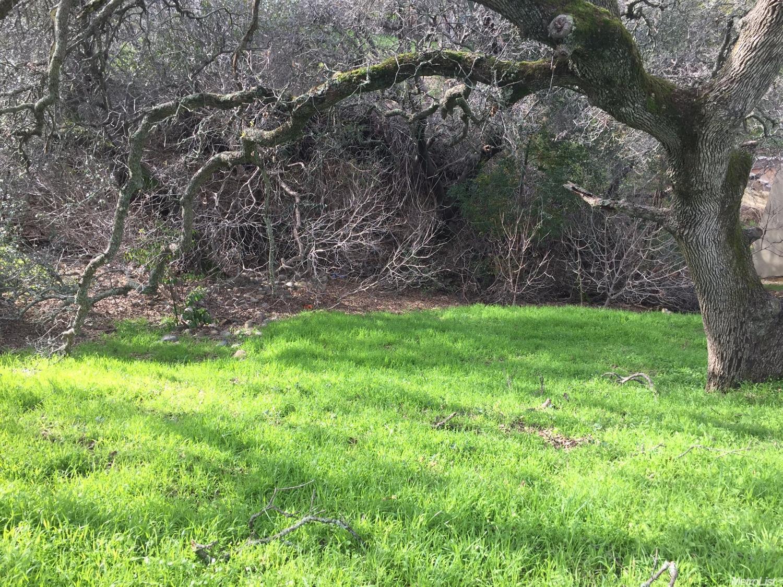 el dorado hills milfs dating site Private spacious backyard w/mature landscaping  comparison of 3007 warren ln, el dorado hills, ca 95762 with nearby homes: new $494,360 4 bd, 2 ba, .