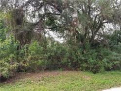 Florida Tropical Little Farm Real Estate — Florida Tropical Little