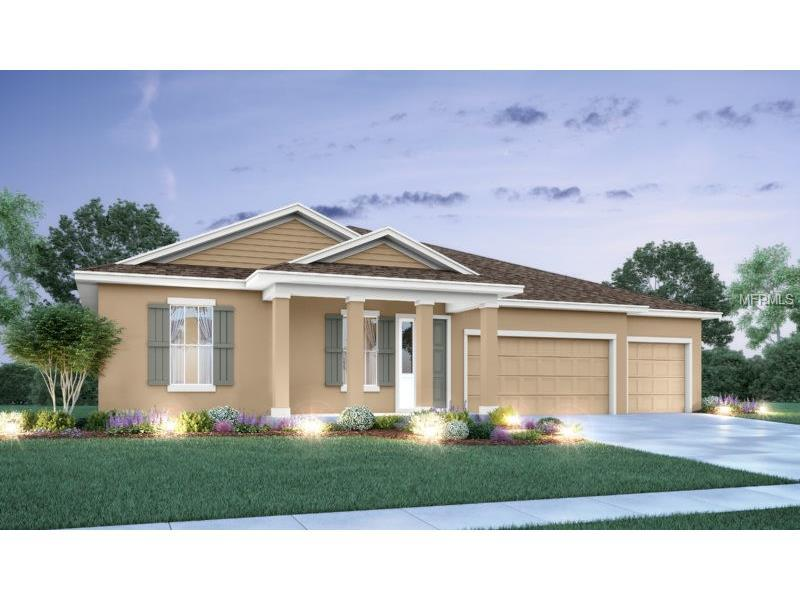 7694 roma dune dr wesley chapel fl mls o5545919 for Epperson ranch homes