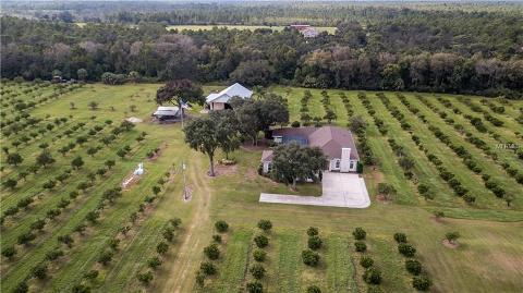 1750 n west christmas road - Homes For Sale In Christmas Fl