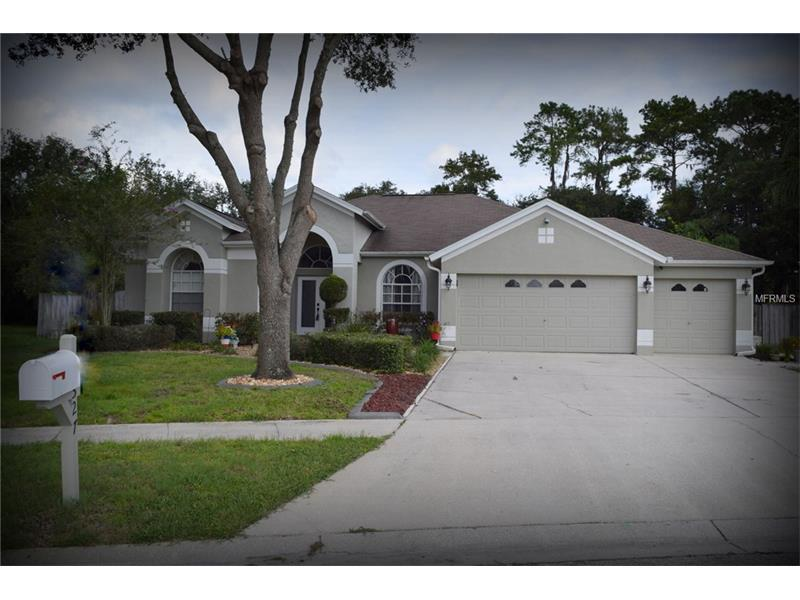 4527 river overlook dr valrico fl mls t2875844