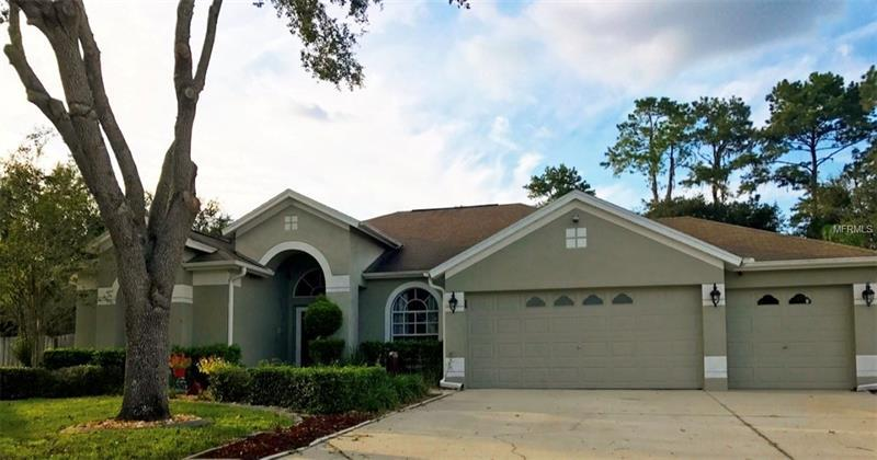 4527 river overlook dr valrico fl mls t2906954