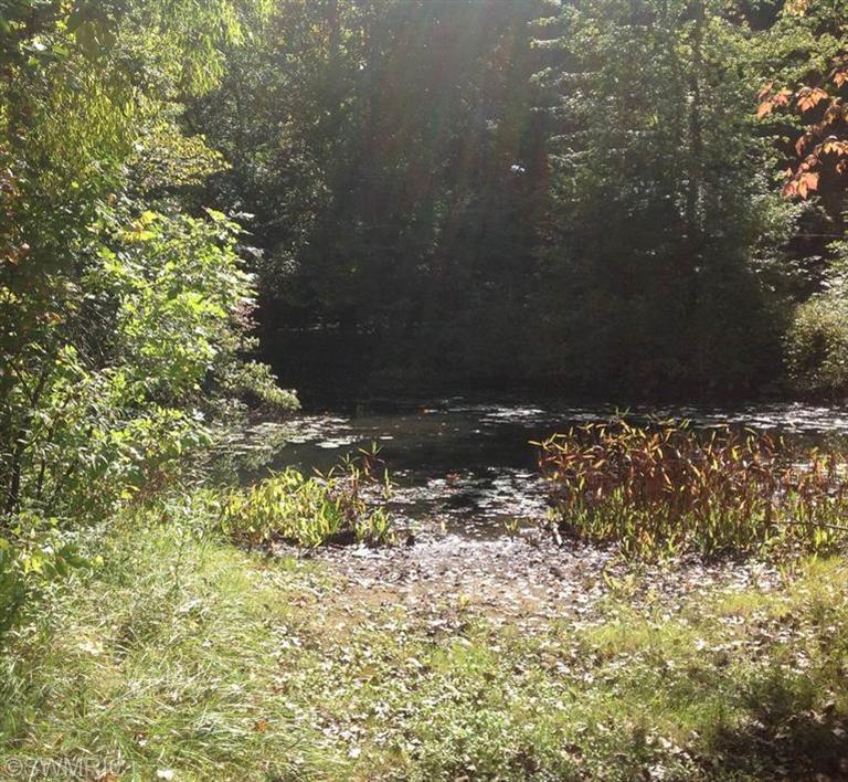 Watervliet Property Search