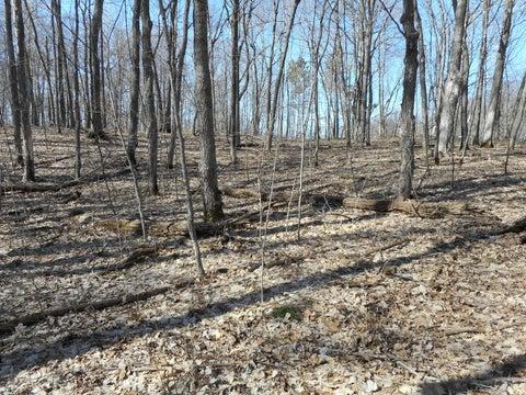 Lot1 Blk2 Campfire Road