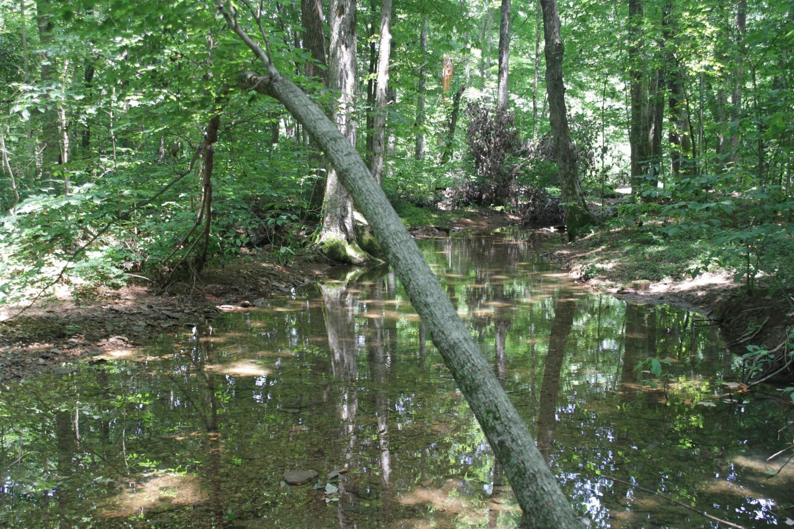 Local swingers cross plains tennessee Lycoming County Obituaries, Lycoming County, Pennsylvania