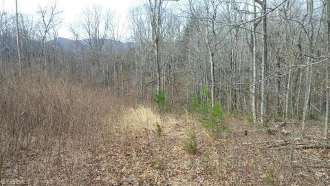 000 Lumber Plant Road
