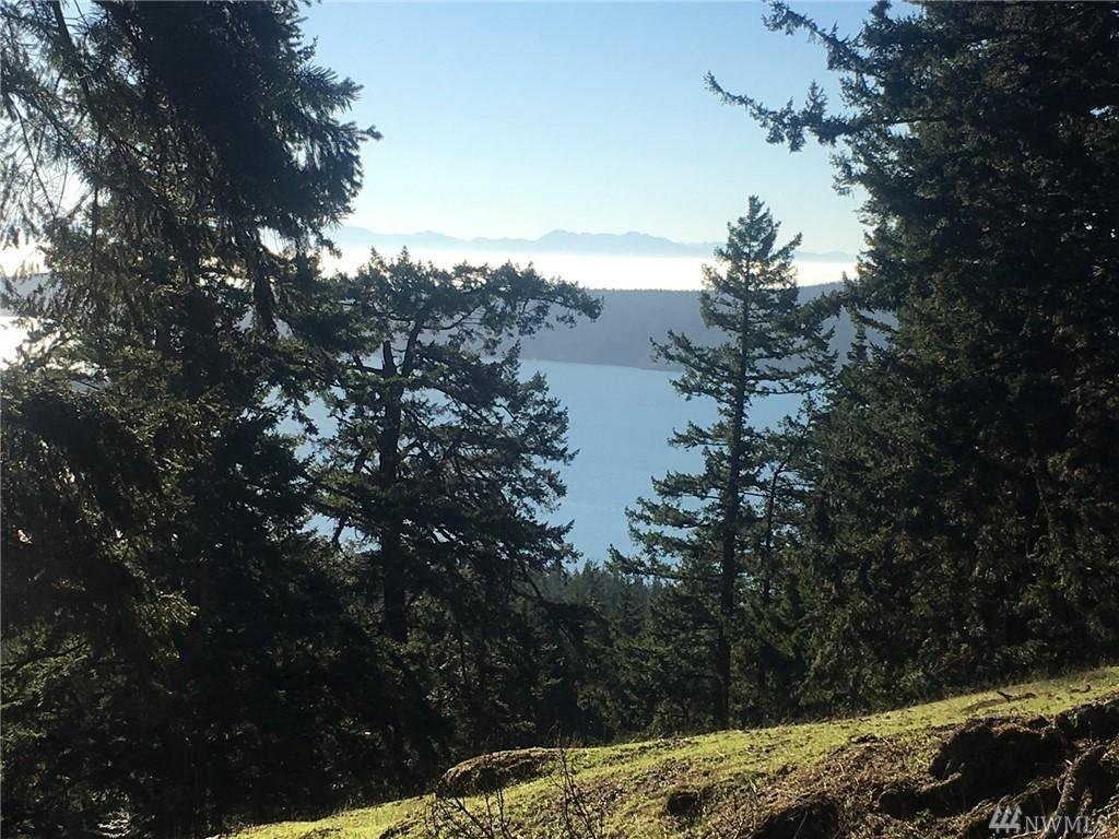 Decatur Island Real Estate For Sale