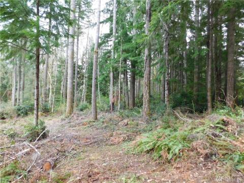 Local Real Estate: Homes for Sale — Belfair, WA — Coldwell