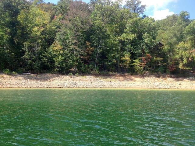 sharps chapel gay dating site Sunset bay located in sharps chapel, provides exceptional panoramic views of norris lake and is built on a peninsula across from the chuck swan wildlife management area.