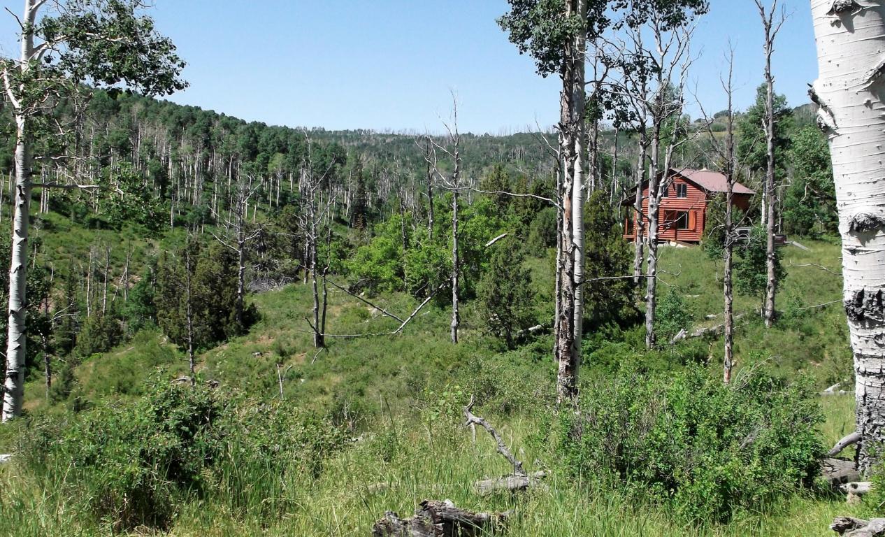 Cabin On 20 Acres Miners Peak Cedar City Ut Mls 79514