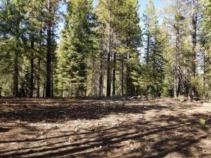 LND located at 2245 E Douglas Trail