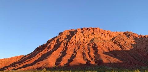 437 E Red Desert Trail