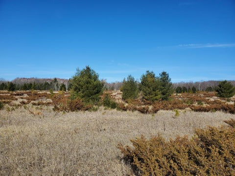Lot 11d Timberline Rd